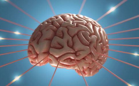 分钟学堂性教育短片:看片导致脑萎缩